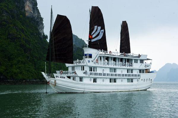 V-Spirit Cruise Profile
