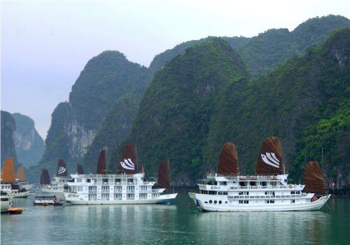 Bhaya Cruise - Overview