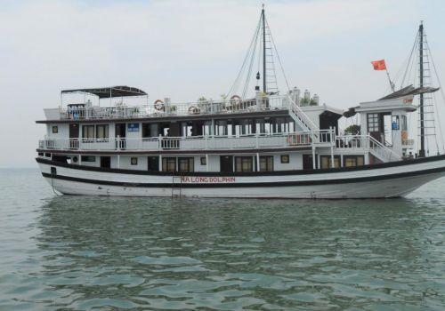HALONG DOLPHIN CRUISE
